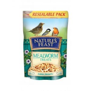 NATURE'S FEAST Mealworms, 100g