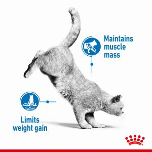 ROYAL CANIN Light Weight Care Gravy Pouch, 85g
