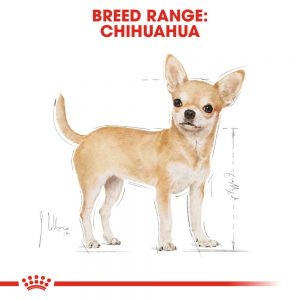 ROYAL CANIN Chihuahua Adult Pouch, 85g